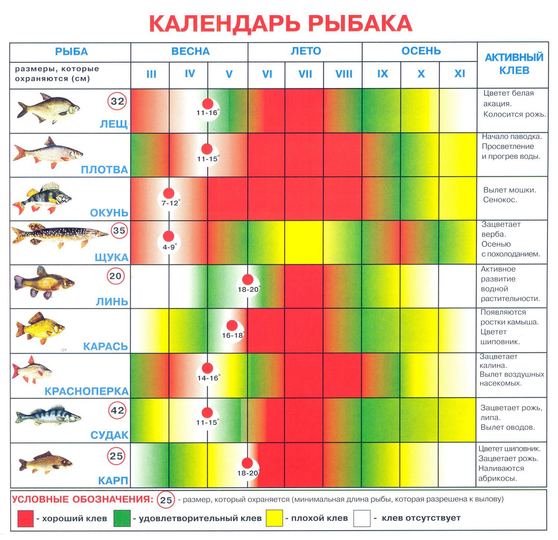 прогноз клева рыбы в якутске на этой неделе